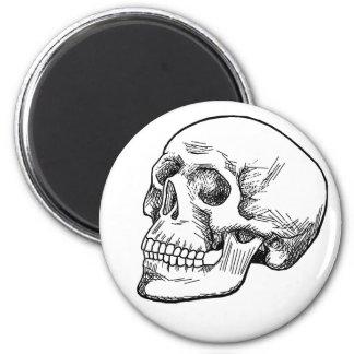 Human Skull Etching Refrigerator Magnets