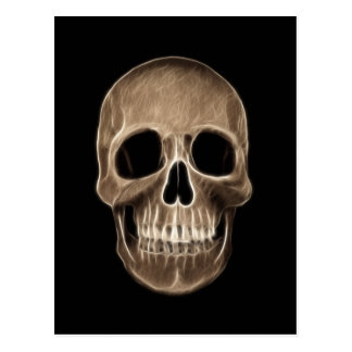 Human Skull Halloween X-Ray Skeleton Post Cards