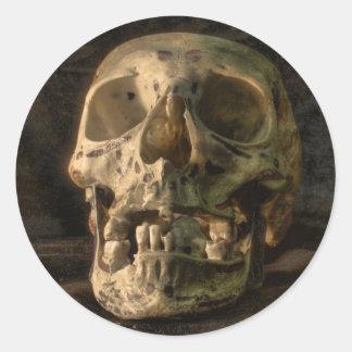 Human Skull HDR Sticker
