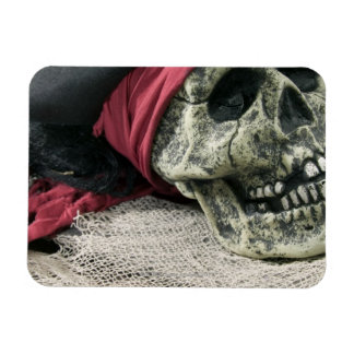 Human skull magnet