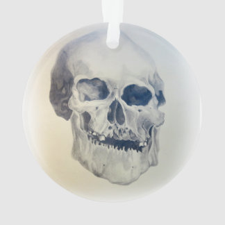 human skull - pencil drawing ornament