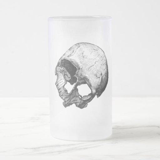 Human Skull Vintage Illustration 16 Oz Frosted Glass Beer Mug