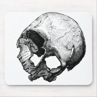 Human Skull Vintage Illustration Mouse Pads