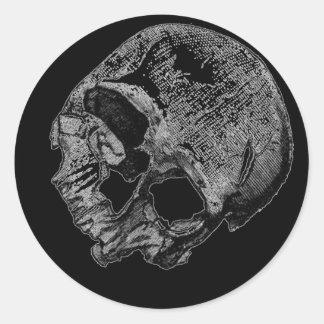 Human Skull Vintage Illustration Sticker