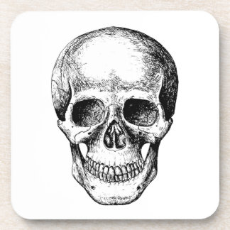 Human Skull White Face Coaster