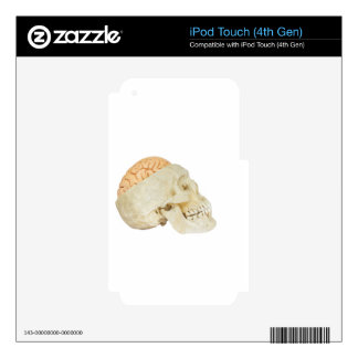 Human skull with brains skin for iPod touch 4G