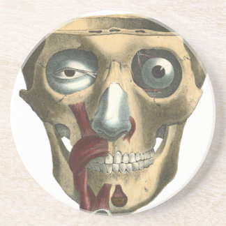 Human Skull with Creepy Eyes Drink Coaster