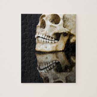 Human skull with mirror image isolated on black puzzle