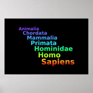 Human Taxonomy Poster