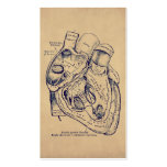 Human Vintage Anatomy Heart Old Paper Texture Business Card