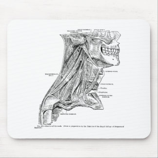 Human Vintage Anatomy Muscles of the Neck Mouse Pad