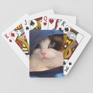Humane Society cat 2 Card Deck
