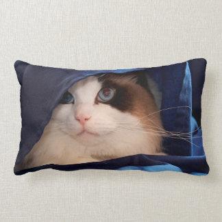 Humane Society cat 2 Lumbar Pillow