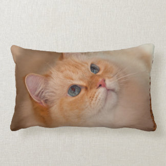 Humane Society cat Lumbar Pillow