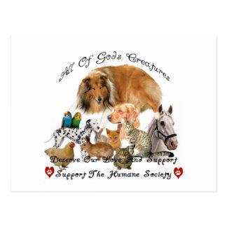 Humano sociedad ayuda animal de las criaturas de tarjetas postales