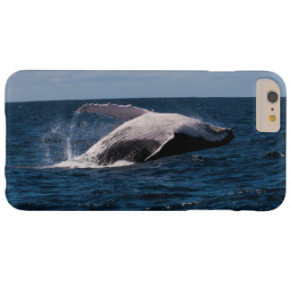 Humback Whale Beaching iPhone 6 Plus Case` Barely There iPhone 6 Plus Case