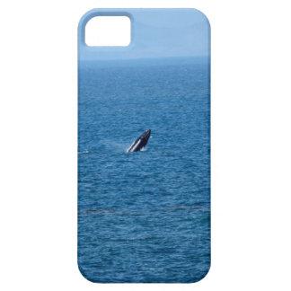 HUMBACK WHALE QUEENSLAND AUSTRALIA iPhone SE/5/5s CASE