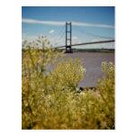 Humber Bridge in the Sun [Postcard]