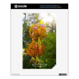 Humboldt Lilies Sunburst Decals For Nook Color