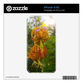 Humboldt Lilies Sunburst Iphone 4s Skins