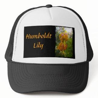 Humboldt Lilies Sunburst Mesh Hats