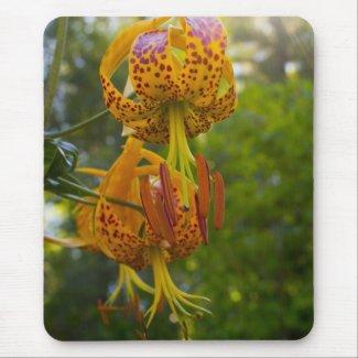 Humboldt Lilies Sunburst Mousepad