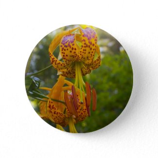 Humboldt Lilies Sunburst Pin