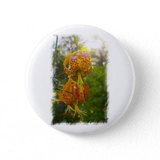Humboldt Lilies Sunburst Pins