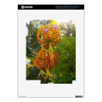 Humboldt Lilies Sunburst Skins For Ipad 3