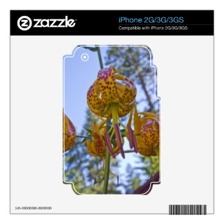 Humboldt Lily Decals For Iphone 3