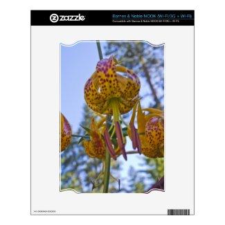 Humboldt Lily Nook Skin