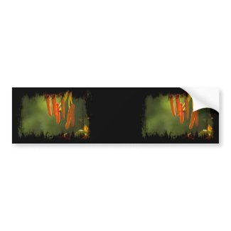 Humboldt Lily Stamens Bumper Sticker