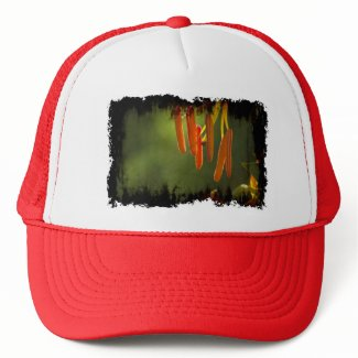 Humboldt Lily Stamens Hats