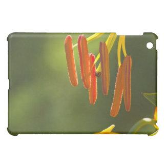 Humboldt Lily Stamens iPad Mini Cases