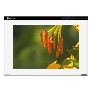 "Humboldt Lily Stamens Skins For 15"" Laptops"