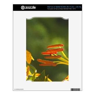 Humboldt Lily Stamens Skins For Nook