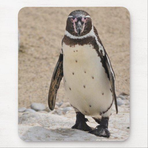 Humboldt Penguin Alfombrilla De Raton