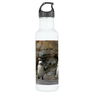 Humboldt Penguin 24oz Water Bottle