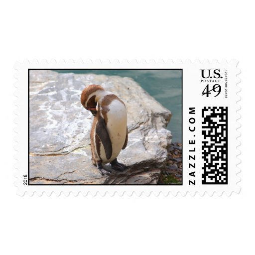 Humboldt penguin postage stamps