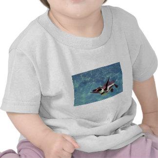 Humboldt penguin under water tshirt
