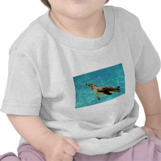 Humboldt penguin under water shirts