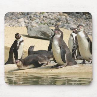 Humboldt Penguins Mousepad