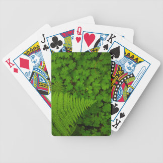 Humboldt Redwoods State Park Bicycle Playing Cards