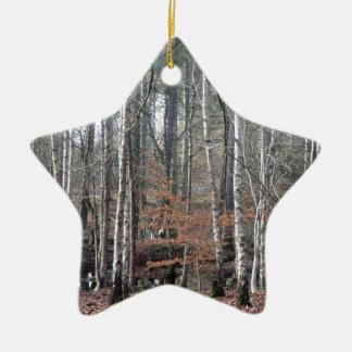 Humedal del bosque de Delamere Adorno Navideño De Cerámica En Forma De Estrella