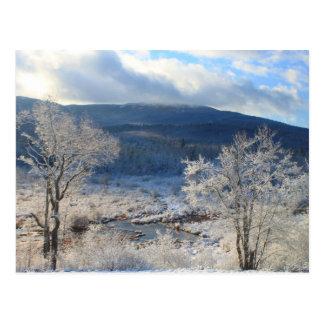 Humedal del invierno de Monadnock del soporte Tarjetas Postales