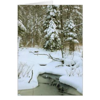 Humedal del invierno tarjeta de felicitación