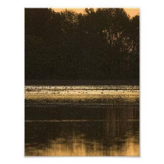 Humedal en la puesta del sol en silueta fotografia