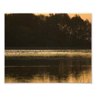 Humedal en la puesta del sol en silueta fotos