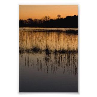 Humedal en la puesta del sol foto