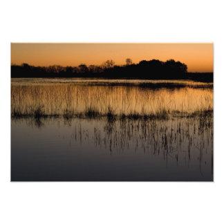 Humedal en la puesta del sol fotos